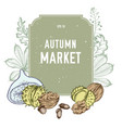 collection of hand drawn autmn market vector image