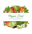 Organic food vegetables harvest poster vector image vector image