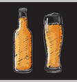 beer bottle and glass isolated icons set vector image