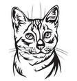 decorative portrait of egyptian mau cat vector image vector image