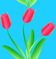 elegance seamless color tulips pattern vector image