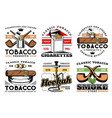 premium quality cigars tobacco cigarettes icons vector image vector image