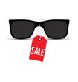 sunglasses with a sale tag vector image