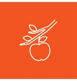 Apple harvest line icon vector image vector image