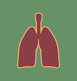 human anatomy lungs sign cordovan icon vector image vector image