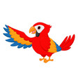 macaw bird cartoon vector image vector image