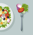 Salad vegetables food healthy organic
