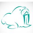 Sea lion vector image vector image