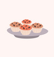 tasty sweet cupcakes with chocolate chips lying on vector image