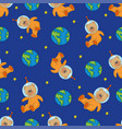 teddi seamless pattern color vector image