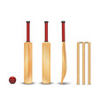 wooden bat wicket ball for game of vector image