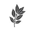 bay leaf glyph icon