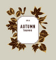collection of hand drawn autumn leaves vector image