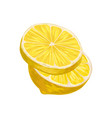 half of lemon with one round slice juicy yellow vector image vector image