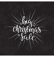 Merry Christmas sale text Calligraphic vector image