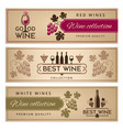 wine banners set design template of vintage wine vector image