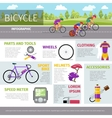 Bicycle infographic template in flat style vector image vector image
