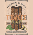 cigars production and tobacco factory shop vector image vector image
