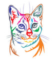 colorful decorative portrait of egyptian mau cat vector image vector image