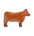 cow animal farm isolated icon vector image
