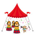 cute lion animal circus vector image vector image