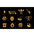yellow honey icons set vector image