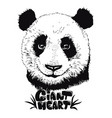 cute panda hand drawn bear vector image