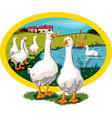 oval frame with rural landscape and geese vector image vector image