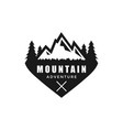 vintage mountain graphic design template vector image