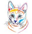 colorful decorative portrait of russian blue cat vector image vector image