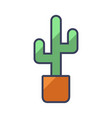 abstract cactuses flower pot plant flat style vector image