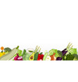 border with vegetables on a white background vector image