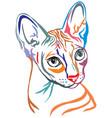 colorful decorative portrait of sphynx cat vector image