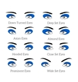 Easy makeup tips for the eyes vector image