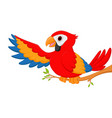 macaw bird cartoon waving vector image vector image