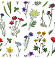 wild flowers seamless pattern floral wildflower vector image