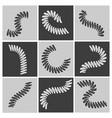 flexible springs set vector image vector image