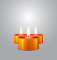 Christmas candles burning vector image vector image
