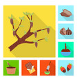 design of treat and product symbol set of vector image