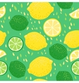 Lemons and Limes Seamless Pattern vector image vector image