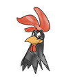 rooster bird farm domestic male image vector image vector image