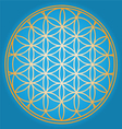 Sacred geometry flower of life vector | Price: 1 Credit (USD $1)