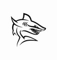 shark logo template vector image