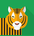 tiger icon set of great flat icons design vector image