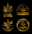 cannabis banners or labels design medical logos vector image vector image