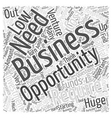 Entrepreneur opportunities Word Cloud Concept vector image