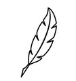 feather outline pen icon silhouette vector image