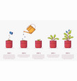 growing plant in pot stages vector image vector image