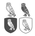heraldic shields with owl vector image vector image