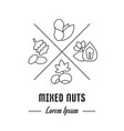 line banner mixed nuts vector image